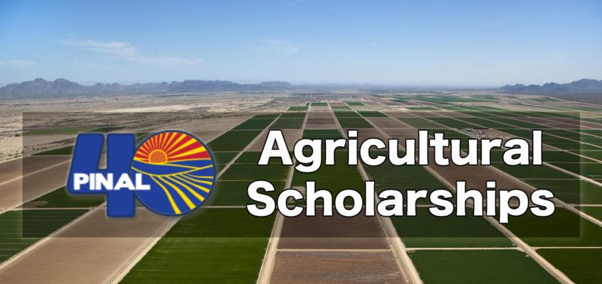 Pinal 40 Scholarship Program